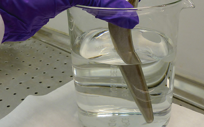 New gel promotes bone growth on orthopaedic implants