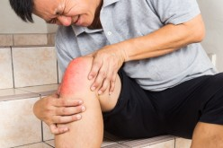 New work on knee cartilage structure to aid better replacements and injury treatments