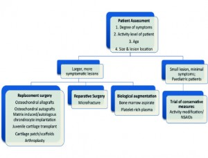 Figure 3: Overview of groups of treatments available for OCL of talus.