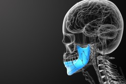 Stem cells from jaw bone help repair damaged cartilage
