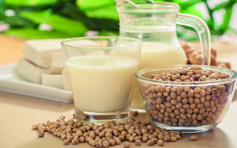Soy protein early in life may help prevent bone loss in adulthood