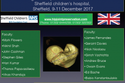 9–11 December 2017 – Young adult hip joint preservation cadaver course; Sheffield