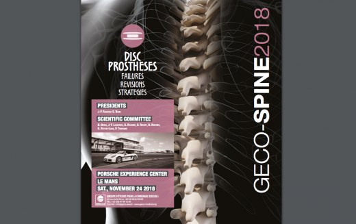 24 November 2018, GECO Spine Course – Disc prostheses – Failure, revisions, strategies; Le Mans, France
