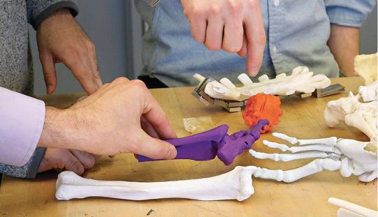 3D printing to help tortured bones