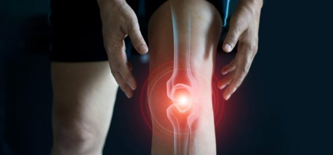 New molecule repairs cartilage and relieves symptoms of osteoarthritis