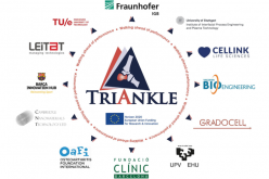 European TRIANKLE project will develop 3D bioprinted personalised scaffolds for tissue regeneration of ankle joint